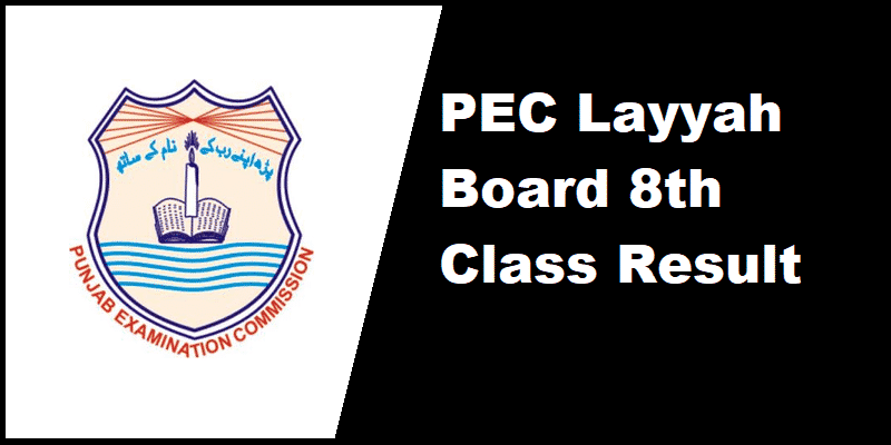PEC Layyah Board 8th Class Result